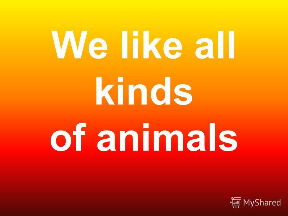 We like all kinds of animals