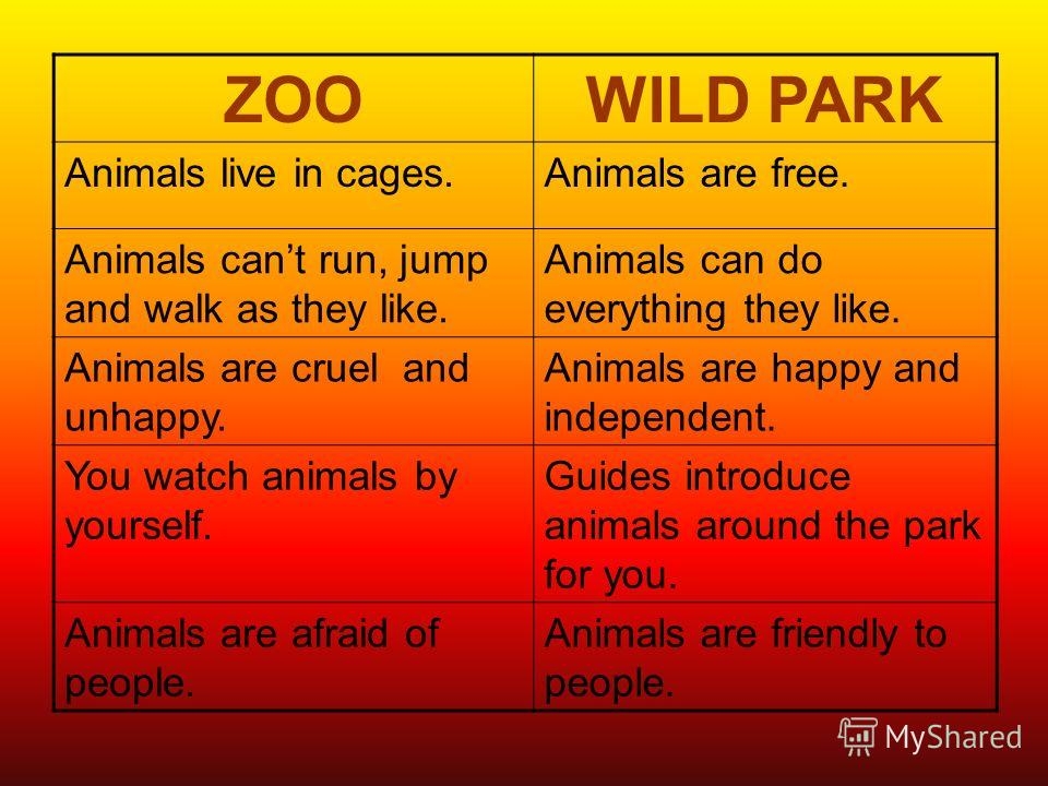 ZOOWILD PARK Animals live in cages.Animals are free. Animals cant run, jump and walk as they like. Animals can do everything they like. Animals are cruel and unhappy. Animals are happy and independent. You watch animals by yourself. Guides introduce