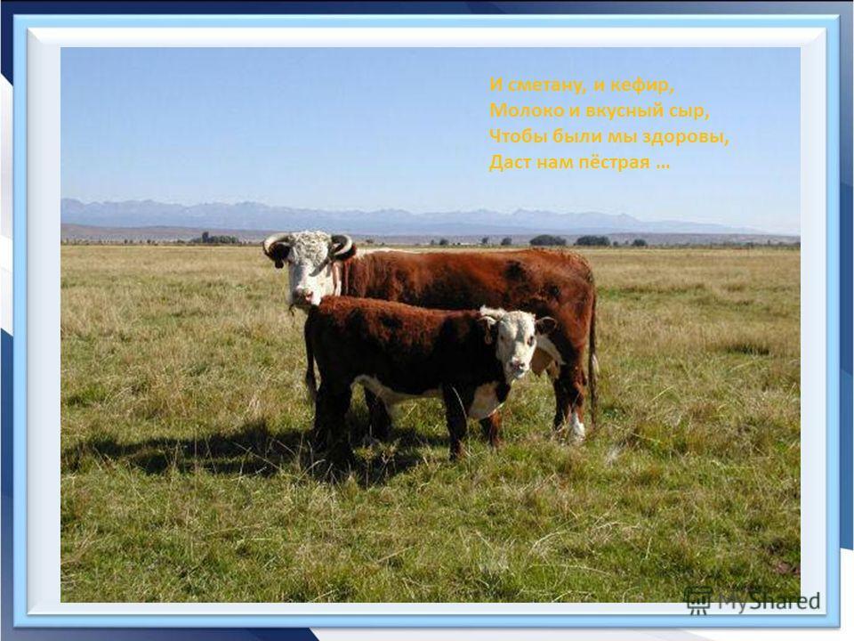 И сметану, и кефир, Молоко и вкусный сыр, Чтобы были мы здоровы, Даст нам пёстрая …