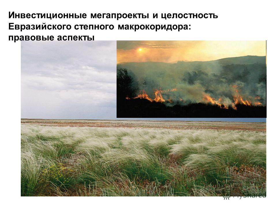 Инвестиционные мегапроекты и целостность Евразийского степного макрокоридора: правовые аспекты
