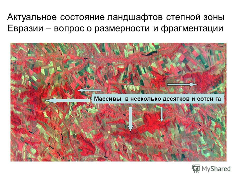 Актуальное состояние ландшафтов степной зоны Евразии – вопрос о размерности и фрагментации Массивы в несколько десятков и сотен га