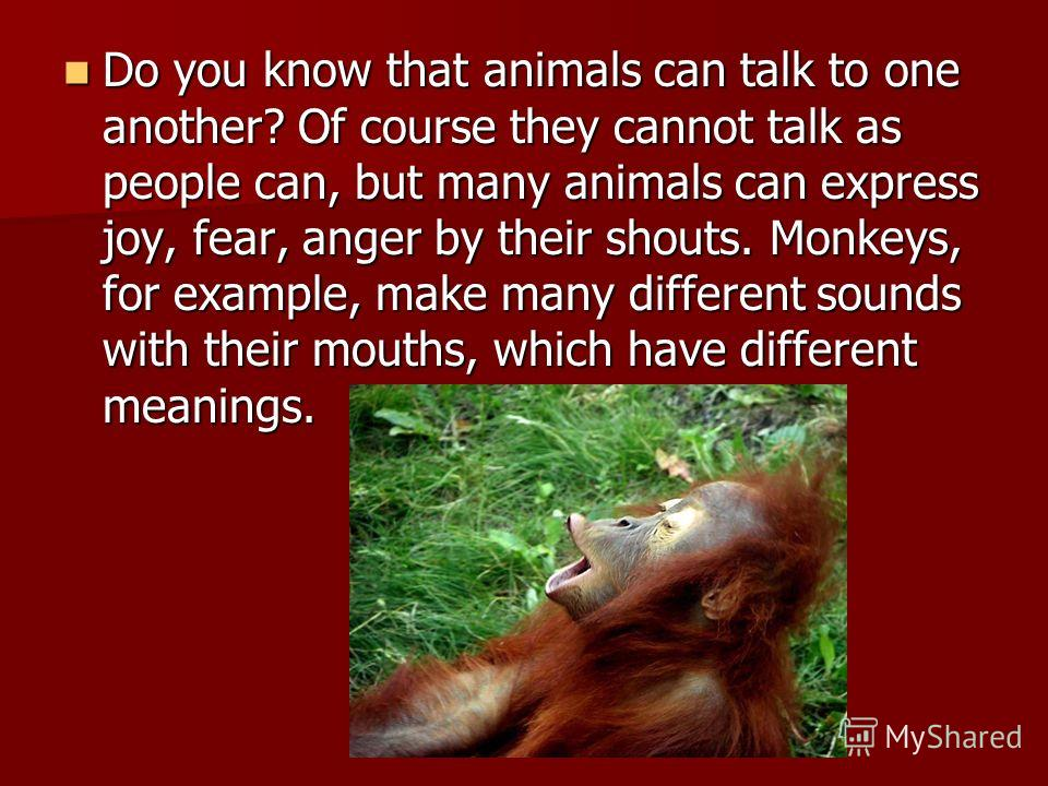 Do you know that animals can talk to one another? Of course they cannot talk as people can, but many animals can express joy, fear, anger by their shouts. Monkeys, for example, make many different sounds with their mouths, which have different meanin