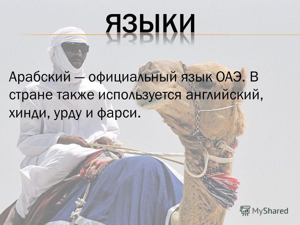 Арабский официальный язык ОАЭ. В стране также используется английский, хинди, урду и фарси.