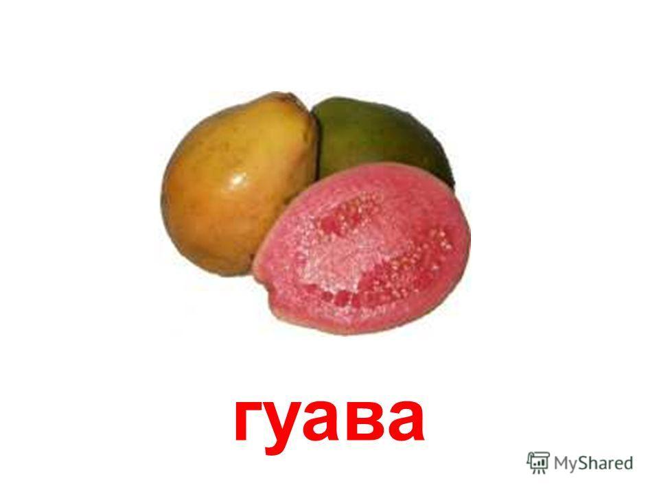 мангостан