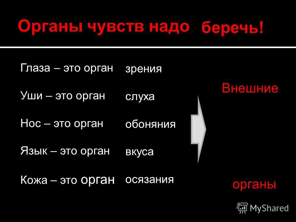 Глаза – это орган Уши – это орган Нос – это орган Язык – это орган Кожа – это орган беречь! зрения слуха обоняния вкуса осязания Внешние органы