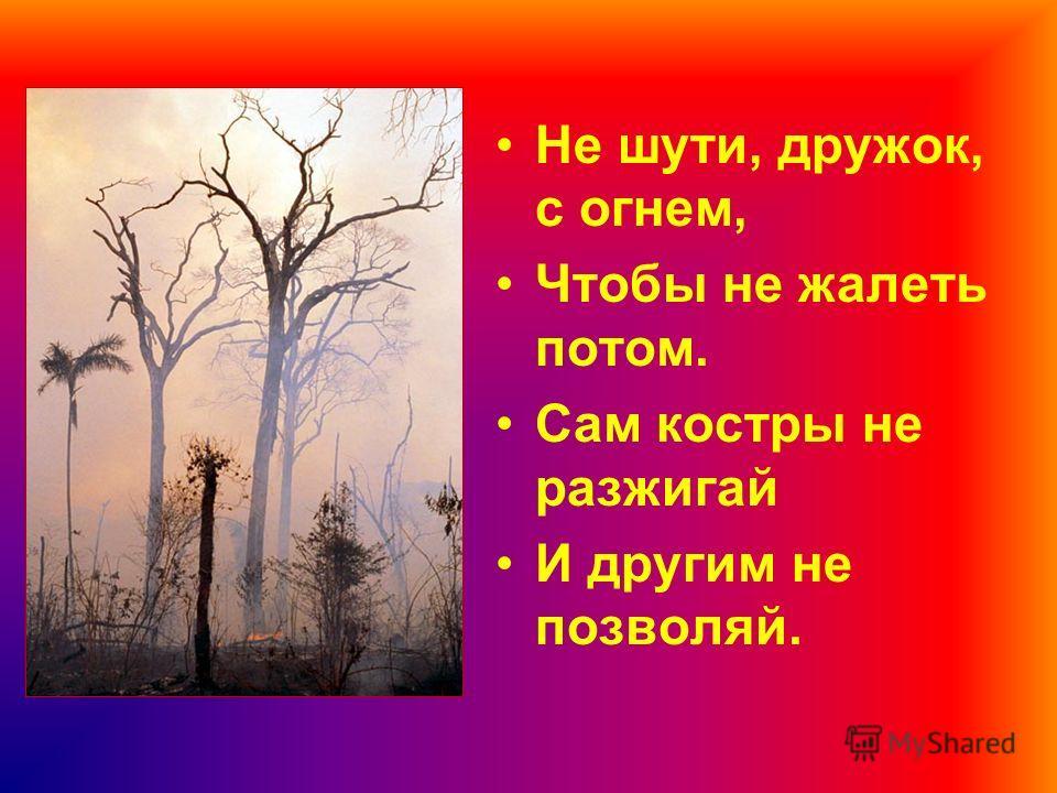 Не шути, дружок, с огнем, Чтобы не жалеть потом. Сам костры не разжигай И другим не позволяй.