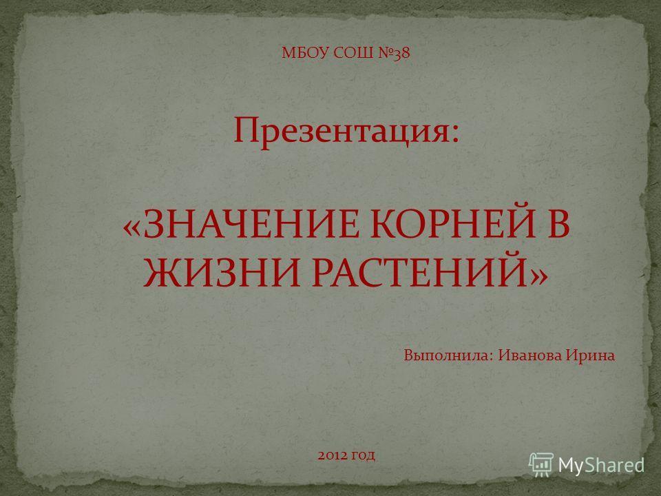 МБОУ СОШ 38 Презентация: «ЗНАЧЕНИЕ КОРНЕЙ В ЖИЗНИ РАСТЕНИЙ» Выполнила: Иванова Ирина 2012 год