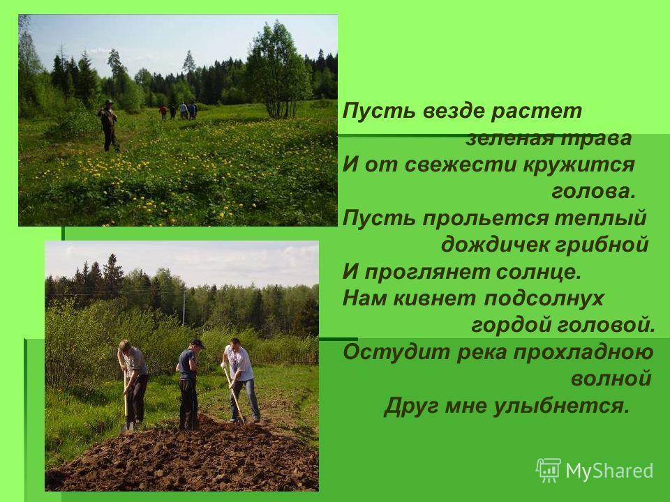Пусть везде растет зеленая трава И от свежести кружится голова. Пусть прольется теплый дождичек грибной И проглянет солнце. Нам кивнет подсолнух гордой головой. Остудит река прохладною волной Друг мне улыбнется.