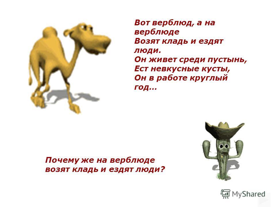 Почему же на верблюде возят кладь и ездят люди? Вот верблюд, а на верблюде Возят кладь и ездят люди. Он живет среди пустынь, Ест невкусные кусты, Он в работе круглый год…