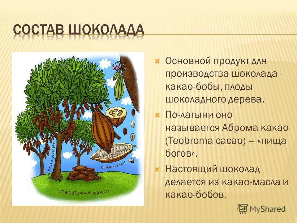 Основной продукт для производства шоколада - какао-бобы, плоды шоколадного дерева. По-латыни оно называется Аброма какао (Teobroma cacao) – «пища богов». Настоящий шоколад делается из какао-масла и какао-бобов.