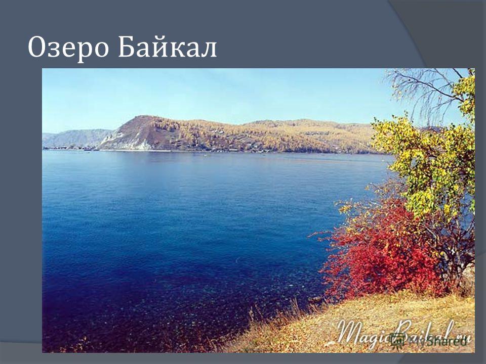 Назовите моря, омывающие берега России