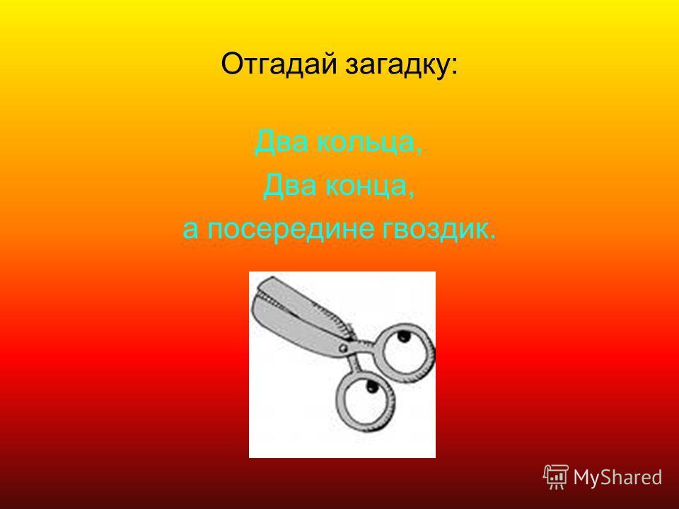 Отгадай загадку: Два кольца, Два конца, а посередине гвоздик.
