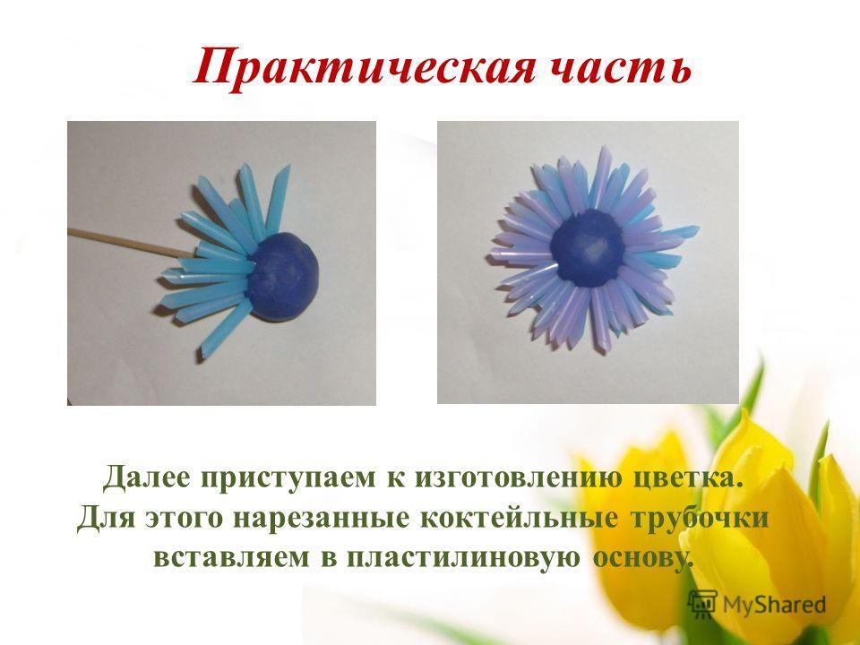 Далее приступаем к изготовлению цветка. Для этого нарезанные коктейльные трубочки вставляем в пластилиновую основу. Практическая часть