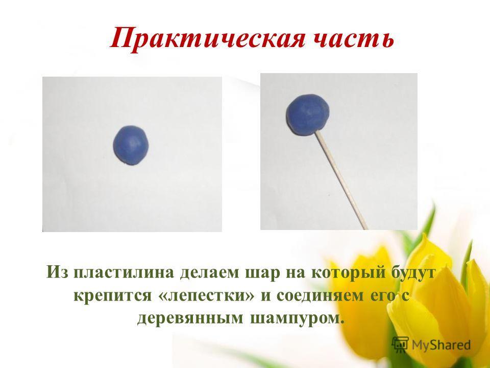 Из пластилина делаем шар на который будут крепится «лепестки» и соединяем его с деревянным шампуром. Практическая часть