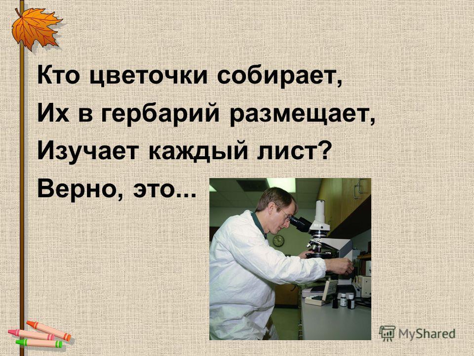 Кто цветочки собирает, Их в гербарий размещает, Изучает каждый лист? Верно, это...