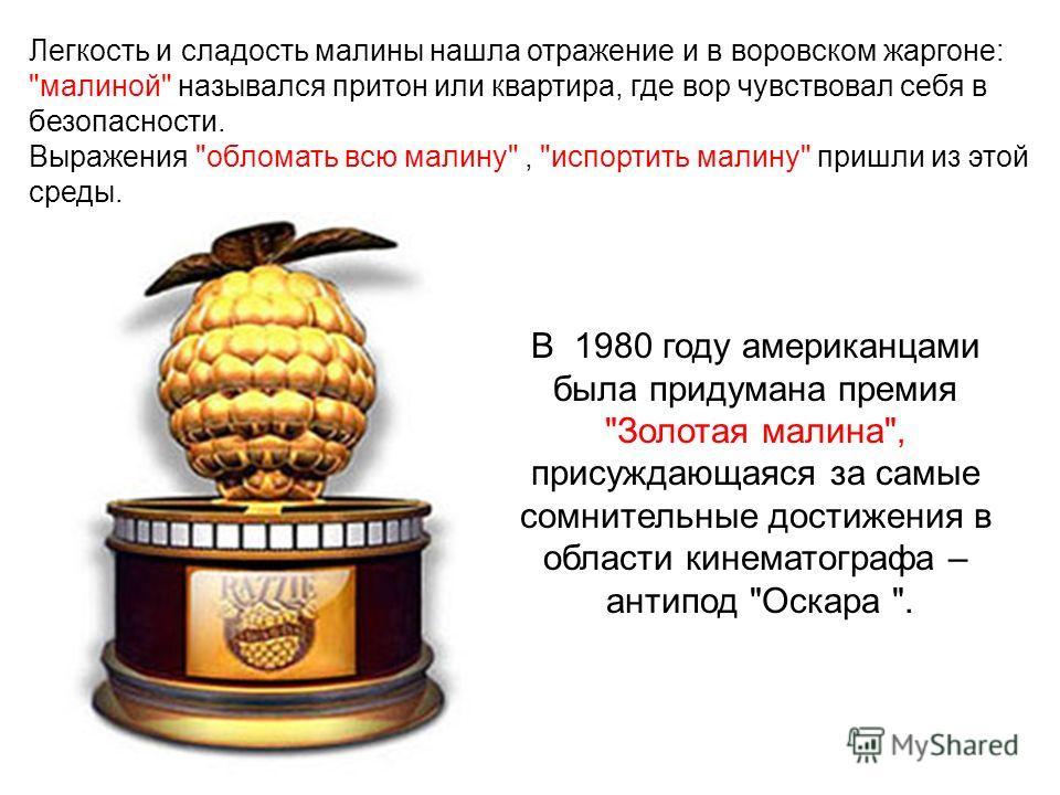 В 1980 году американцами была придумана премия