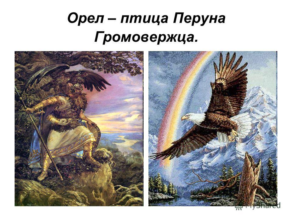 Орел – птица Перуна Громовержца.