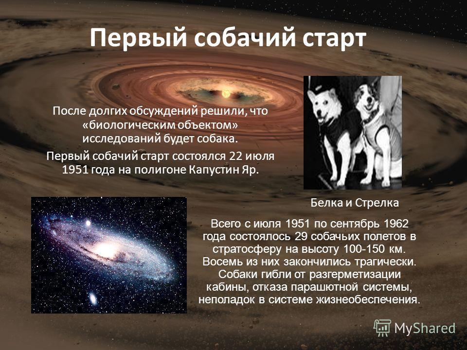 После долгих обсуждений решили, что «биологическим объектом» исследований будет собака. Первый собачий старт состоялся 22 июля 1951 года на полигоне Капустин Яр. Белка и Стрелка Первый собачий старт Всего с июля 1951 по сентябрь 1962 года состоялось