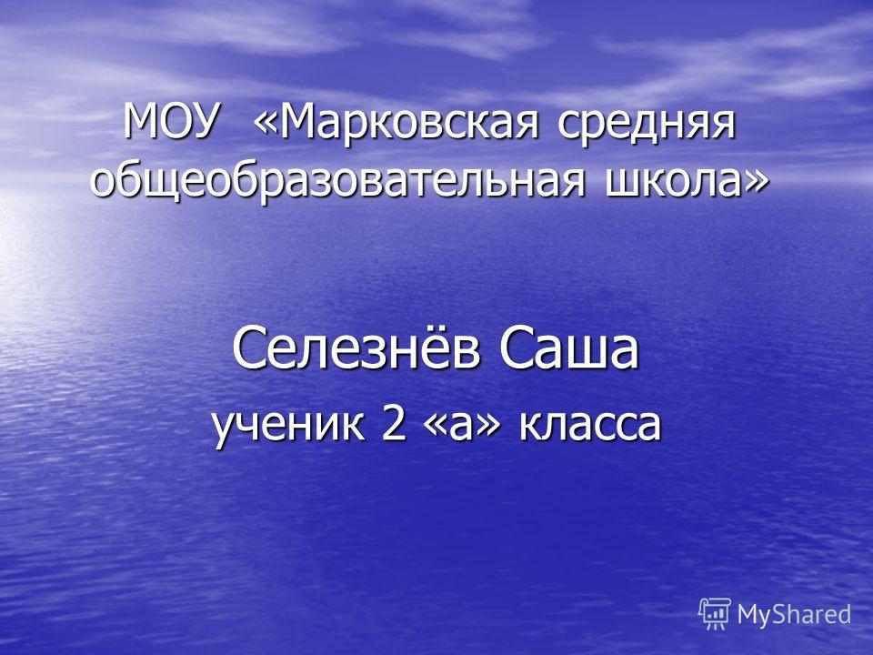 МОУ «Марковская средняя общеобразовательная школа» Селезнёв Саша ученик 2 «а» класса