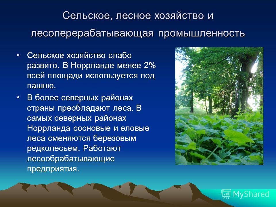 Сельское, лесное хозяйство и лесоперерабатывающая промышленность Сельское хозяйство слабо развито. В Норрланде менее 2% всей площади используется под пашню. В более северных районах страны преобладают леса. В самых северных районах Норрланда сосновые