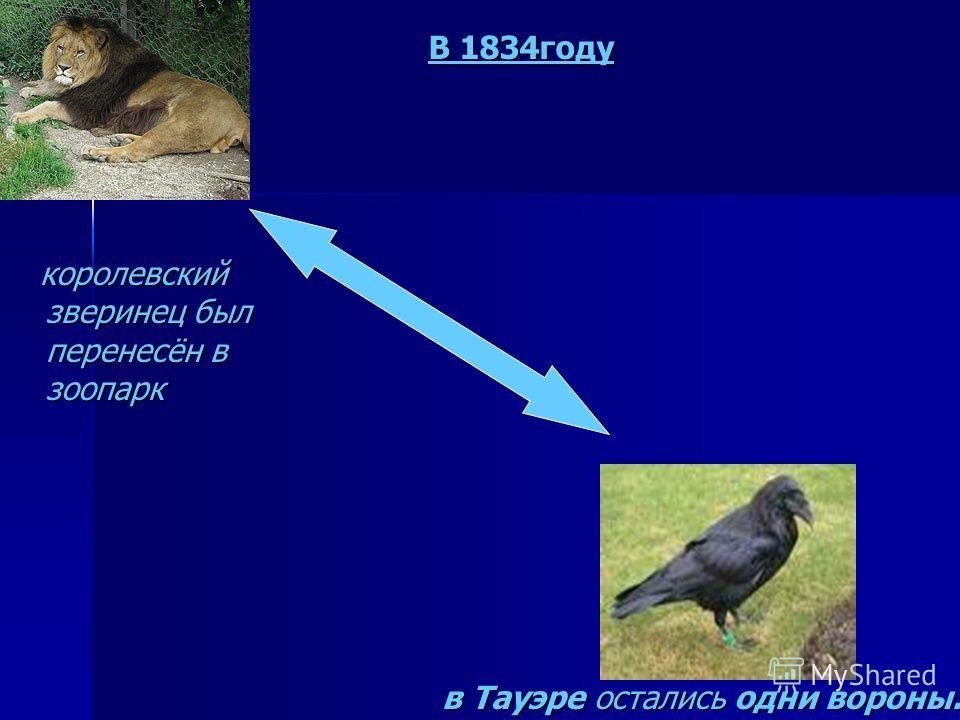 королевский зверинец был перенесён в зоопарк в Тауэре остались одни вороны. В 1834году