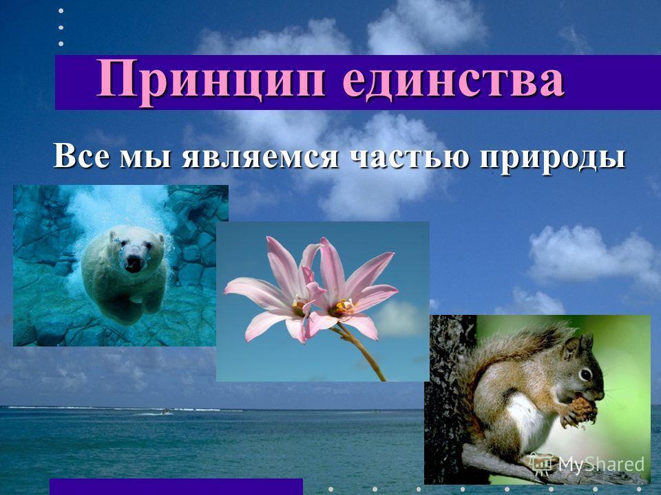 Принцип единства Все мы являемся частью природы Все мы являемся частью природы