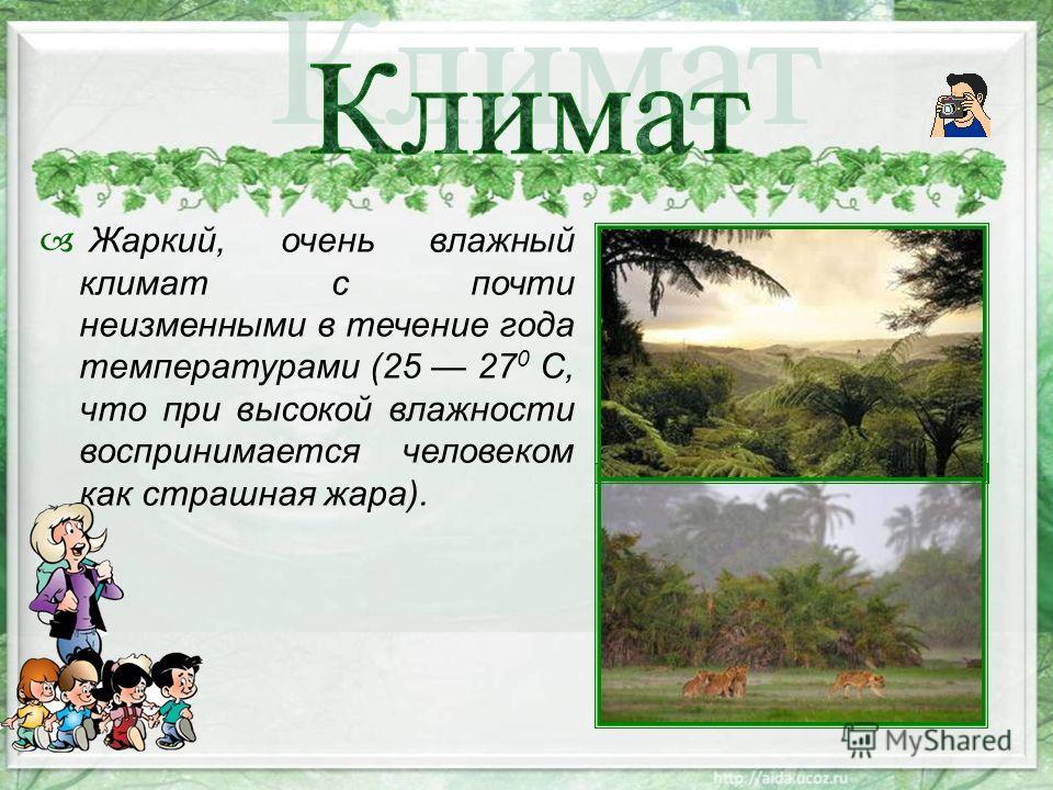Жаркий, очень влажный климат с почти неизменными в течение года температурами (25 27 0 С, что при высокой влажности воспринимается человеком как страшная жара).