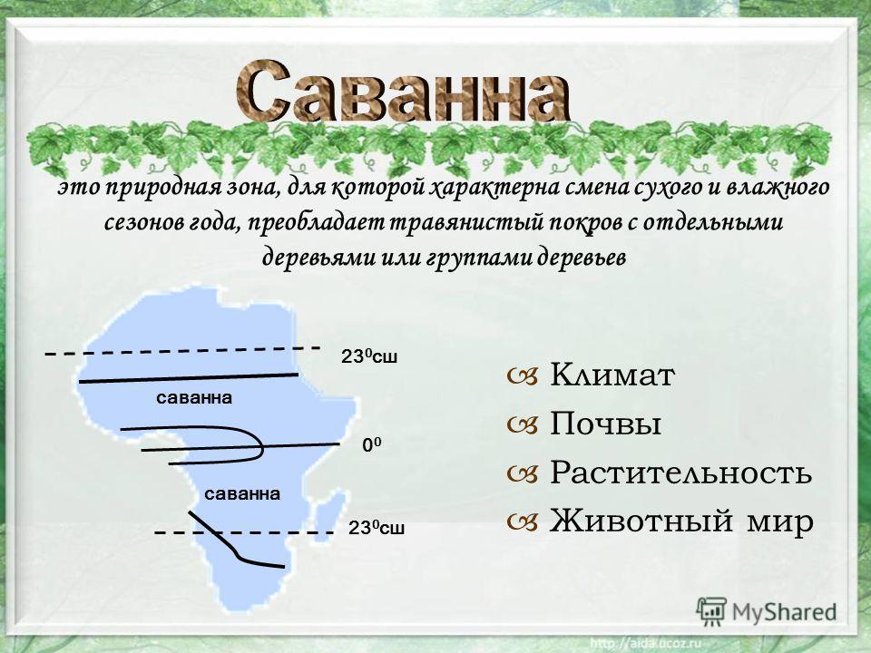 это природная зона, для которой характерна смена сухого и влажного сезонов года, преобладает травянистый покров с отдельными деревьями или группами деревьев Климат Почвы Растительность Животный мир 23 0 сш 0 саванна