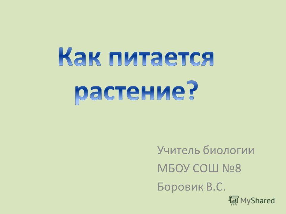 Учитель биологии МБОУ СОШ 8 Боровик В.С.