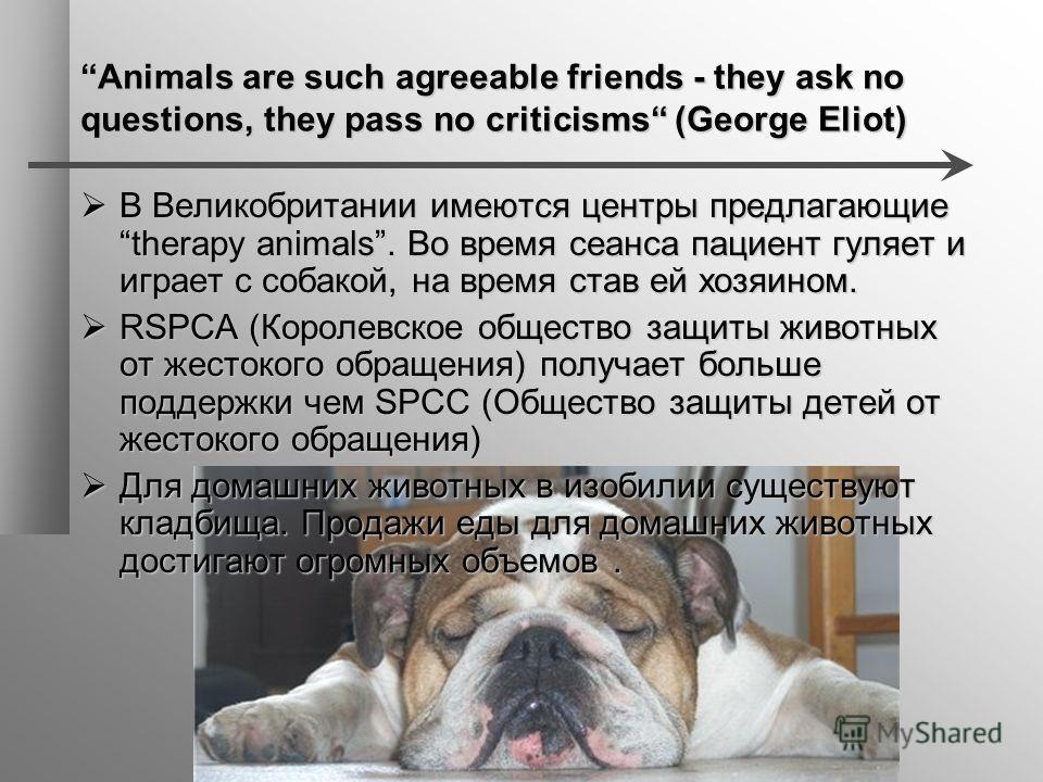 Animals are such agreeable friends - they ask no questions, they pass no criticisms (George Eliot) В Великобритании имеются центры предлагающие therapy animals. Во время сеанса пациент гуляет и играет с собакой, на время став ей хозяином. В Великобри