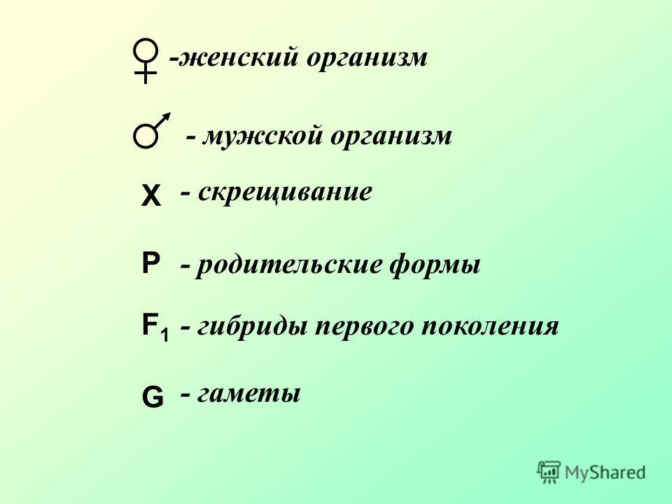 X P F1F1 G -женский организм - мужской организм - скрещивание - родительские формы - гибриды первого поколения - гаметы