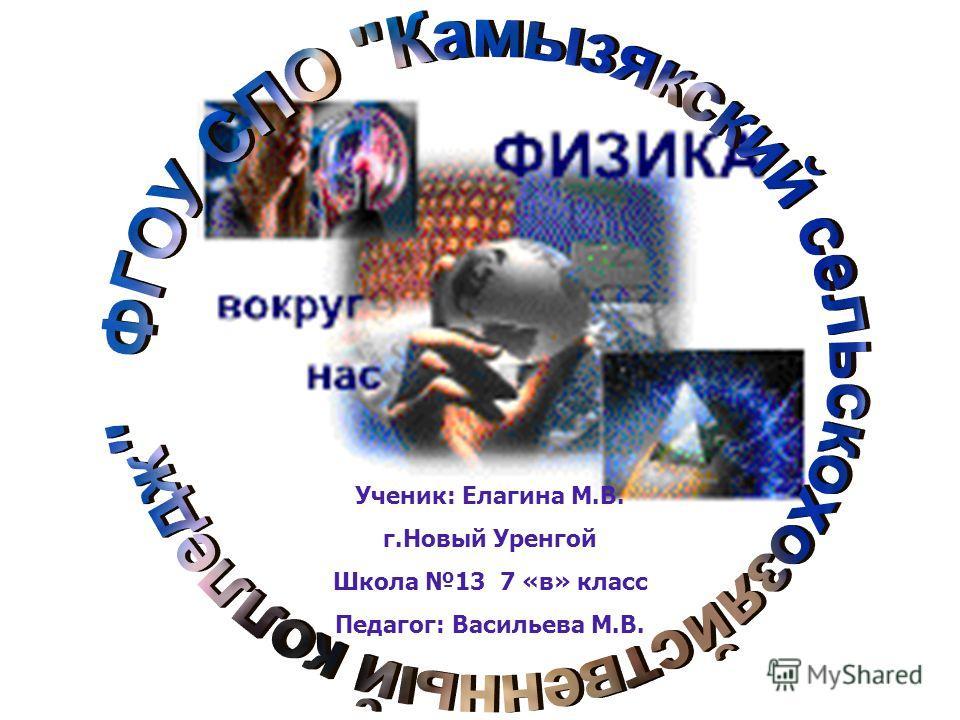 Ученик: Елагина М.В. г.Новый Уренгой Школа 13 7 «в» класс Педагог: Васильева М.В.