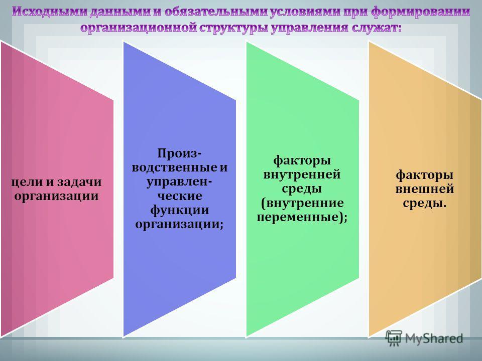 цели и задачи организации Произ- водственные и управлен- ческие функции организации; факторы внутренней среды (внутренние переменные); факторы внешней среды.