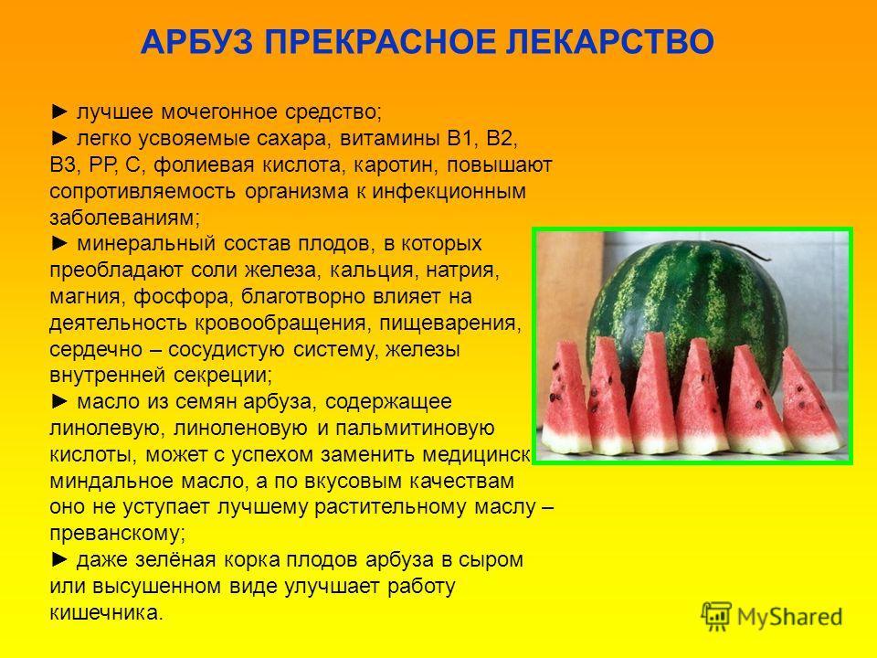 лучшее мочегонное средство; легко усвояемые сахара, витамины В1, В2, В3, РР, С, фолиевая кислота, каротин, повышают сопротивляемость организма к инфекционным заболеваниям; минеральный состав плодов, в которых преобладают соли железа, кальция, натрия,