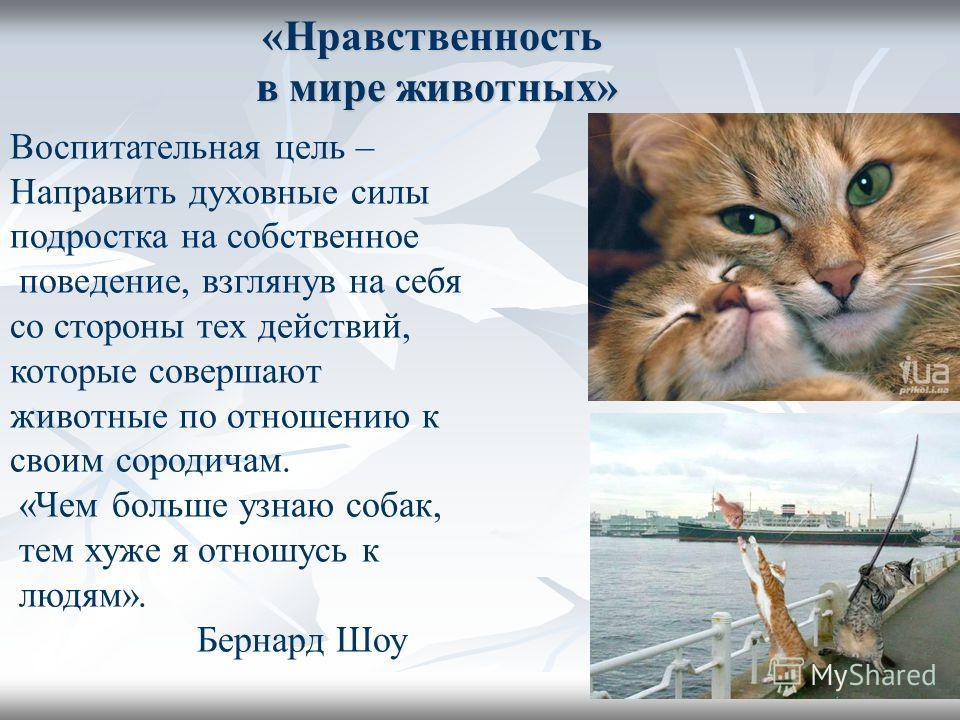 «Нравственность в мире животных» Воспитательная цель – Направить духовные силы подростка на собственное поведение, взглянув на себя со стороны тех действий, которые совершают животные по отношению к своим сородичам. «Чем больше узнаю собак, тем хуже