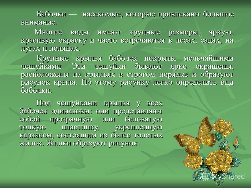 Бабочки насекомые, которые привлекают большое внимание. Многие виды имеют крупные размеры, яркую, красивую окраску и часто встречаются в лесах, садах, на лугах и полянах. Крупные крылья бабочек покрыты мельчайшими чешуйками. Эти чешуйки бывают ярко о