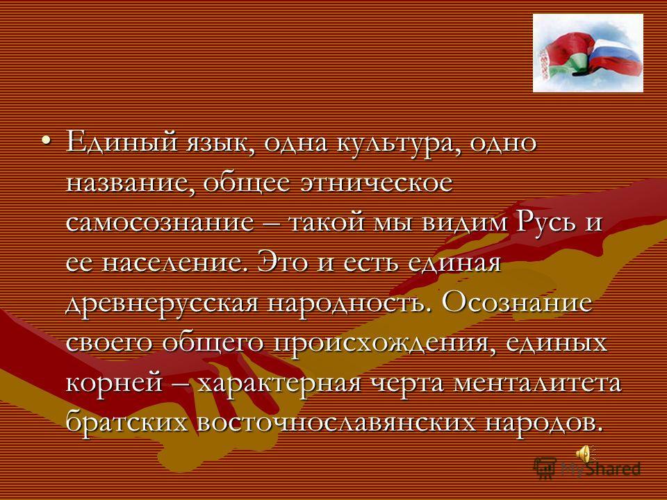 Единый язык, одна культура, одно название, общее этническое самосознание – такой мы видим Русь и ее население. Это и есть единая древнерусская народность. Осознание своего общего происхождения, единых корней – характерная черта менталитета братских в