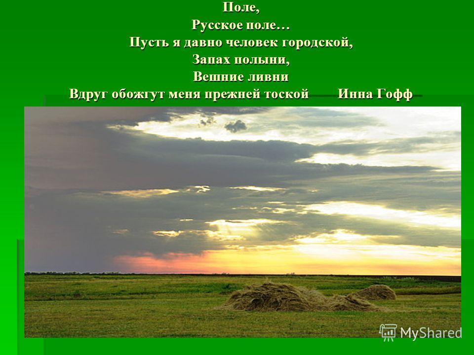 Поле, Русское поле… Пусть я давно человек городской, Запах полыни, Вешние ливни Вдруг обожгут меня прежней тоской Инна Гофф