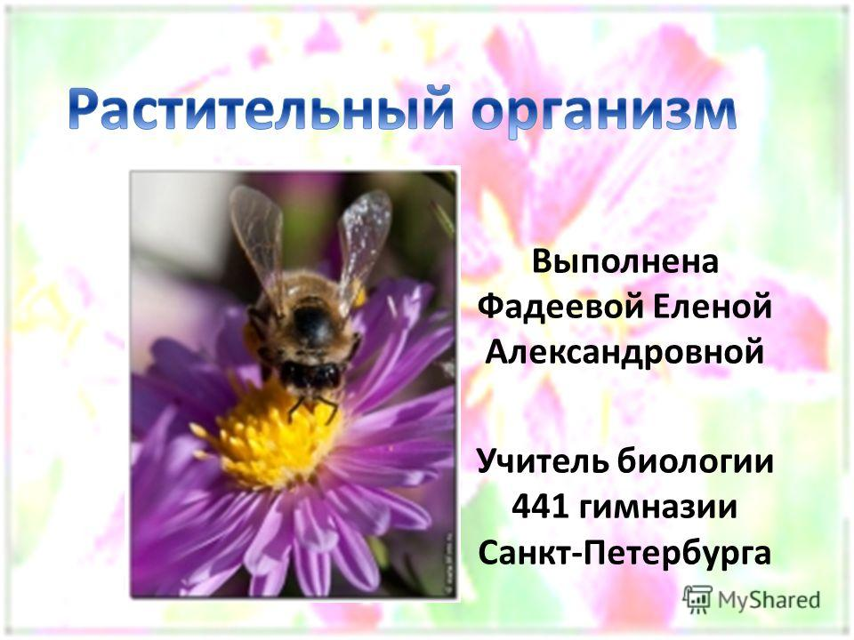 Выполнена Фадеевой Еленой Александровной Учитель биологии 441 гимназии Санкт-Петербурга