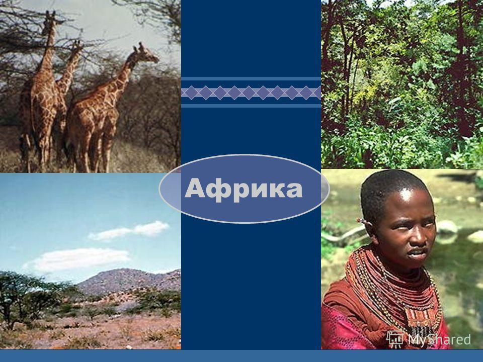 ЖДЕМ ВАС! Африка