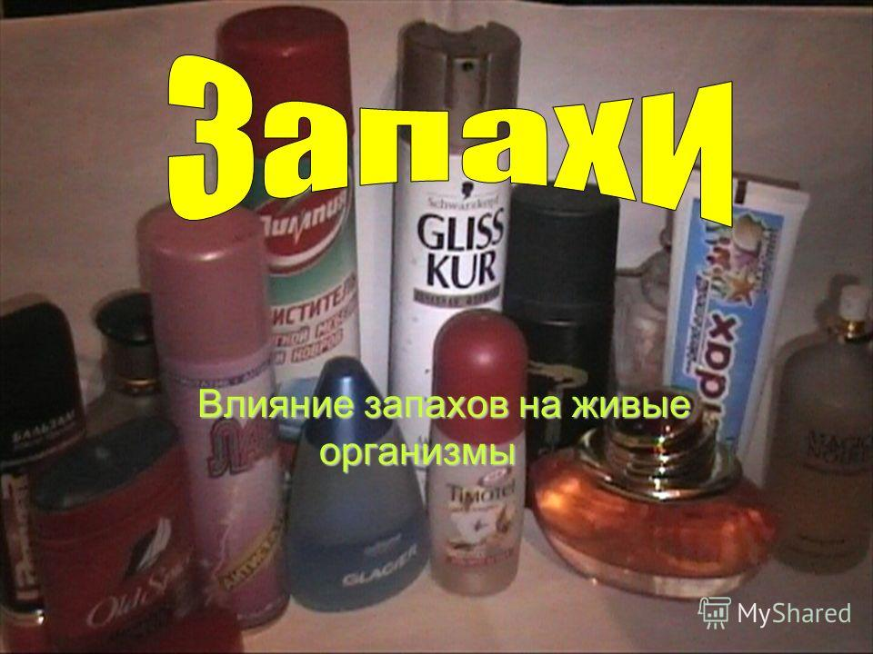 Влияние запахов на живые организмы
