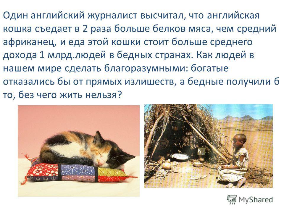 Один английский журналист высчитал, что английская кошка съедает в 2 раза больше белков мяса, чем средний африканец, и еда этой кошки стоит больше среднего дохода 1 млрд.людей в бедных странах. Как людей в нашем мире сделать благоразумными: богатые о