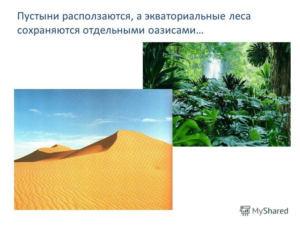 Пустыни расползаются, а экваториальные леса сохраняются отдельными оазисами…