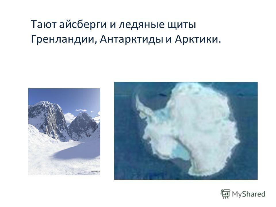 Тают айсберги и ледяные щиты Гренландии, Антарктиды и Арктики.
