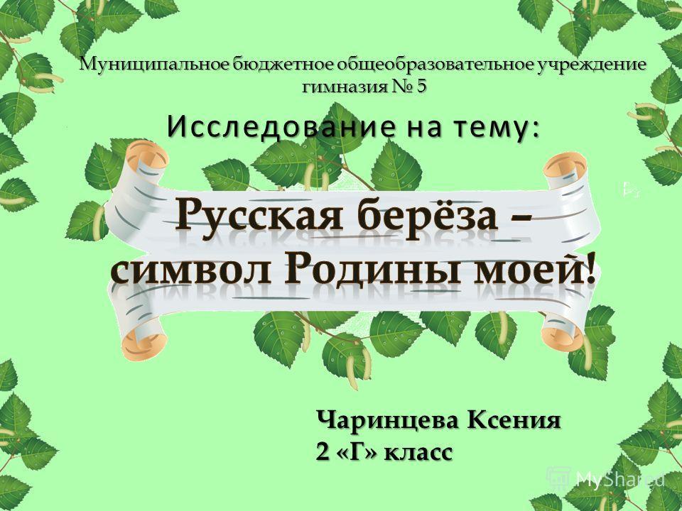 Муниципальное бюджетное общеобразовательное учреждение гимназия 5 Чаринцева Ксения 2 «Г» класс