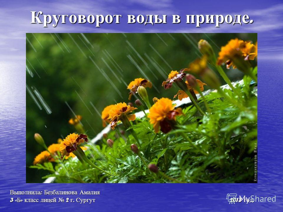 Круговорот воды в природе. Выполнила : Безбалинова Амалия 3 « Б » класс лицей 2 г. Сургут 2013 год.