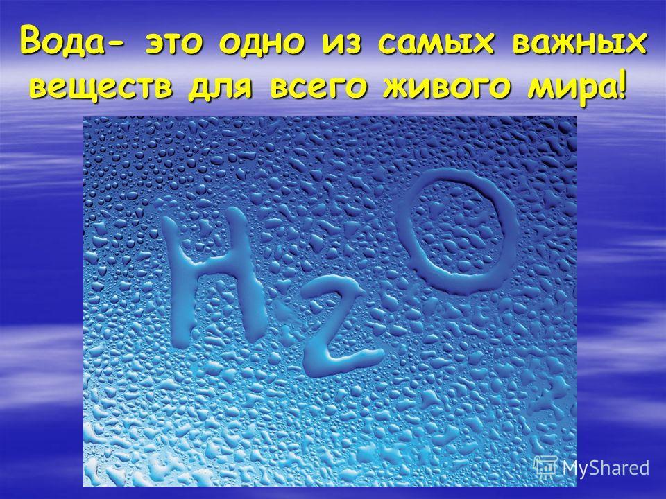 Вода- это одно из самых важных веществ для всего живого мира! Вода- это одно из самых важных веществ для всего живого мира!