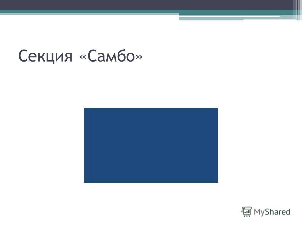 Секция «Самбо»