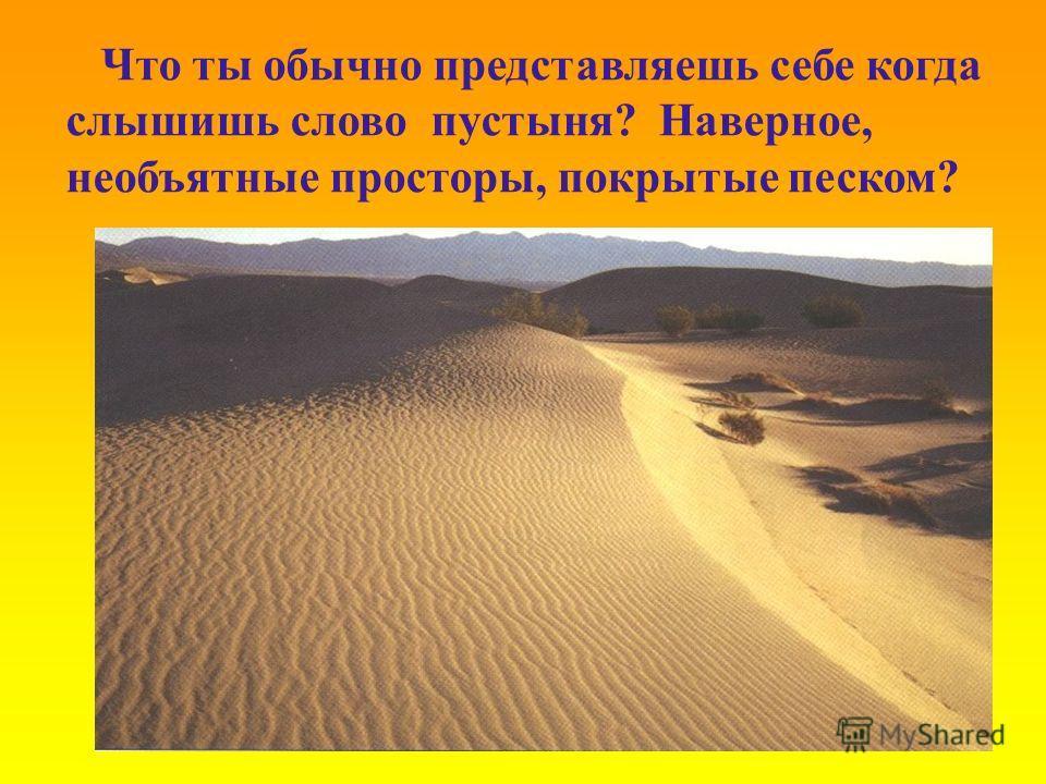 Что ты обычно представляешь себе когда слышишь слово пустыня? Наверное, необъятные просторы, покрытые песком?