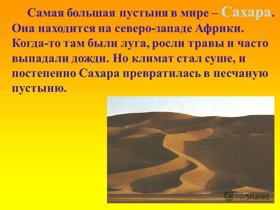 Самая большая пустыня в мире – Сахара. Она находится на северо-западе Африки. Когда-то там были луга, росли травы и часто выпадали дожди. Но климат стал суше, и постепенно Сахара превратилась в песчаную пустыню.